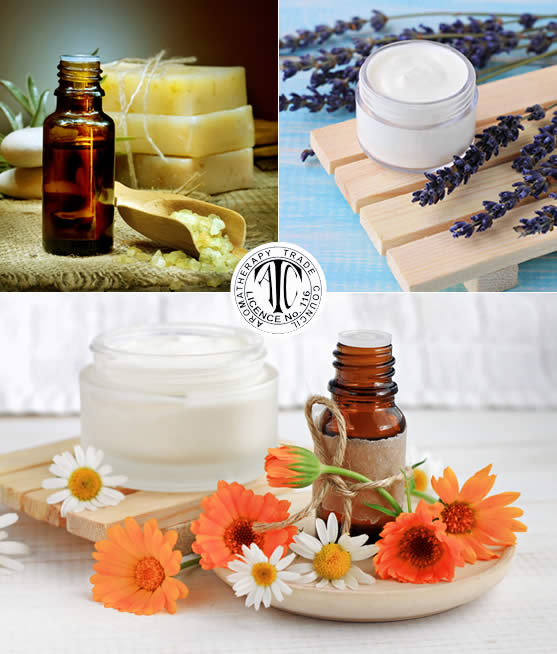 Base Products & Creams for Essential Oils