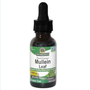 Natures Answer Mullein Alcohol Free Fluid Extract 30ml