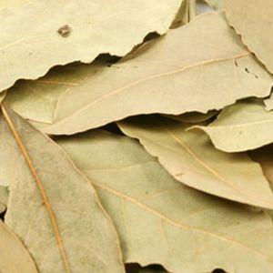 Baldwins Bay Leaves ( Laurus Nobilis )
