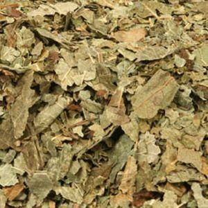 Baldwins Blackcurrant Leaves ( Ribes Nigrum )