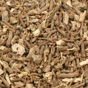 Baldwins Black Root ( Veronicastrum Virginica )