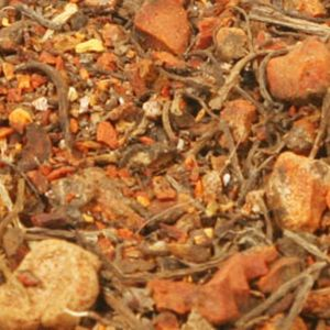 Baldwins Blood Root ( Sanguinaria Canadensis )
