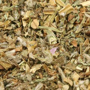 Baldwins Borage Herb ( Borago Officinalis )