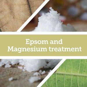 Baldwins Remedy Creator - Epsom and Magnesium Treatment