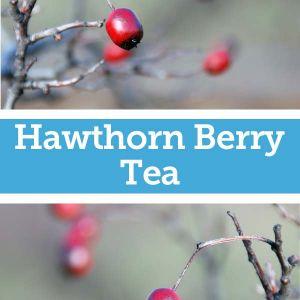 Baldwins Remedy Creator - Hawthorn Berry Tea