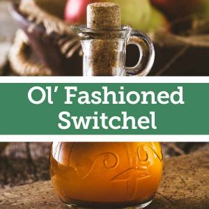 Baldwins Remedy Creator - Ol' Fashioned Switchel