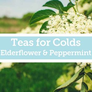 Baldwins Remedy Creator - Teas for Colds - Elderflower & Peppermint
