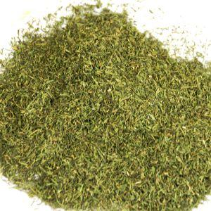 Baldwins Dill Weed ( Anethum Graveolens )