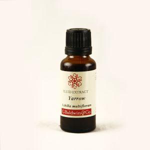 Baldwins Yarrow ( Achillea Millefolium ) Herbal Fluid Extract