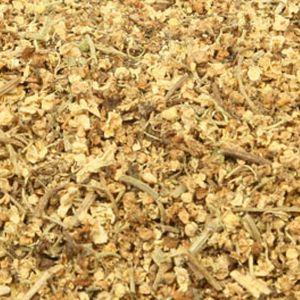 Baldwins Elderflower ( Sambucus Nigra )