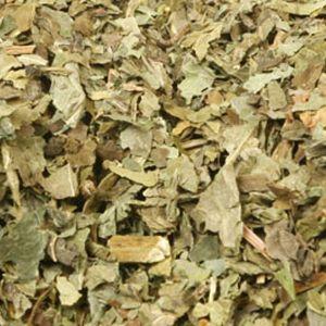 Baldwins Elder Leaves ( Sambucus Nigra )