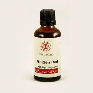 Baldwins Golden Rod ( Solidago Virgaurea ) Herbal Tincture