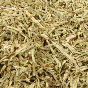 Baldwins Horsetail Herb ( Equisetum arvense )