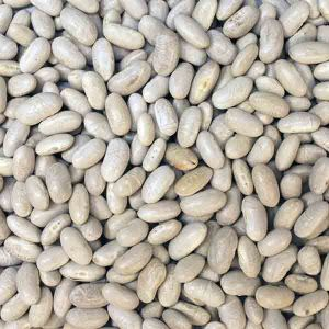 Infinity Foods Organic Cannellini Beans
