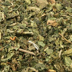 Baldwins Nettle Herb ( Urtica dioica )