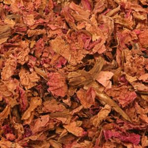 Baldwins Peony ( Paeonia lactiflora ) Petals