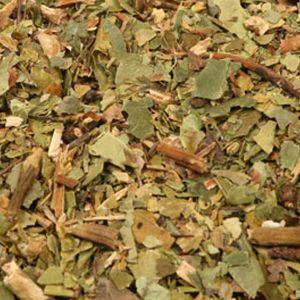 Baldwins Princes Pine (pipsissiwa) Herb ( Chimaphila Umbellata )