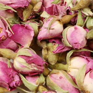 Baldwins Rose Buds Pink