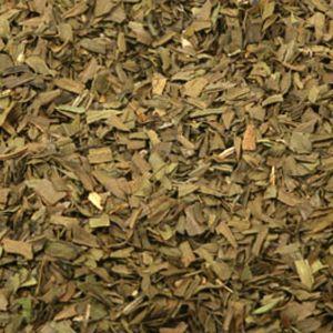 Baldwins Tarragon Herb (artemisia Dracunculus)