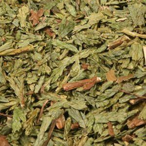 Baldwins Thuja Herb  ( Thuja Occidentalis )