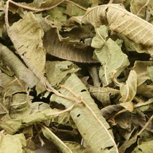 Baldwins Lemon Verbena Herb