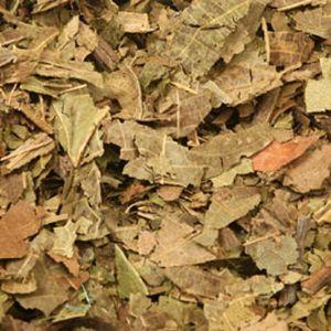 Baldwins Walnut Leaves ( Juglans regia )
