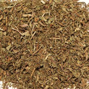 Baldwins Wild Lettuce ( Lactuta virosa ) Herb