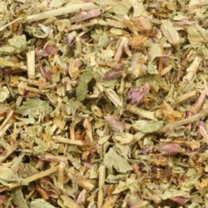 Baldwins Woodsage ( Teucrium scorodonia ) Herb