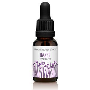 Findhorn Flower Essences Hazel 15ml
