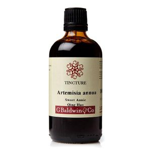 Baldwins Artemesia Annua (sweet Annie / Qing Hao) Herbal Tincture