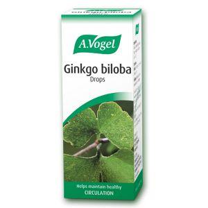 A Vogel Ginkgo Biloba Tincture 50ml