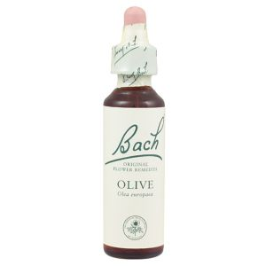 Bach Flower Remedy Olive