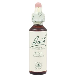 Bach Flower Remedy Pine