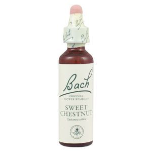 Bach Flower Remedy Sweet Chestnut