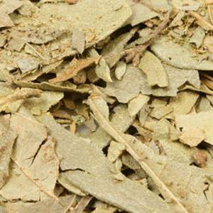Baldwins Boldo Leaves ( Peumus Boldo )