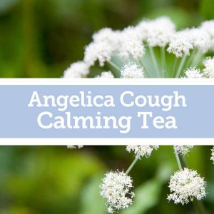 Baldwins Remedy Creator - Angelica Cough Calming Tea