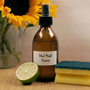 Baldwins Remedy Creator - Black Mould Remover