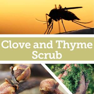 Baldwins Remedy Creator - Clove and Thyme Scrub