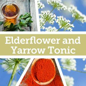 Baldwins Remedy Creator - Elderflower and Yarrow Tonic