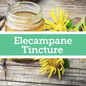 Baldwins Remedy Creator - Elecampane Tincture