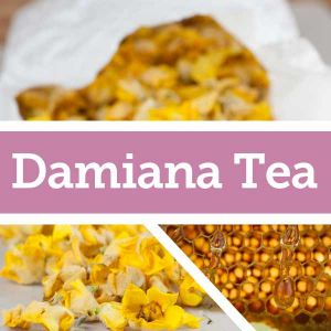 Baldwins Remedy Creator - Damiana Tea