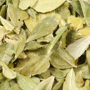 Baldwins Buchu Herb ( Barosama Betulina )