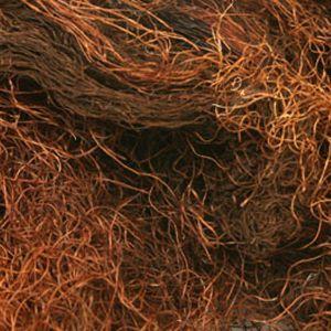 Baldwins Cornsilk Herb ( Zea Mays )