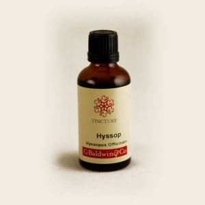 Baldwins Hyssop ( Hyssopus Officinalis ) Herbal Tincture