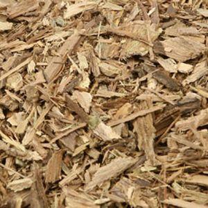 Baldwins Jamaican Dogwood ( Pisidia Erythrina )
