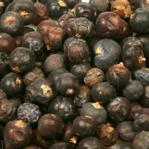 Baldwins Juniper Berries ( Juniperus Communis )
