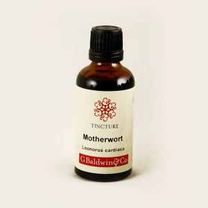 Baldwins Motherwort ( Leonurus Cardiaca ) Herbal Tincture