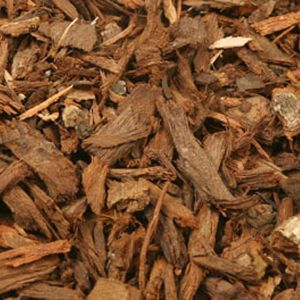 Baldwins Pygeum Bark ( Pygeum Africanum )