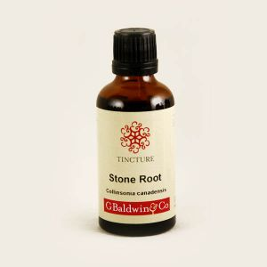 Baldwins Stone Root (collinsonia) Herbal Tincture