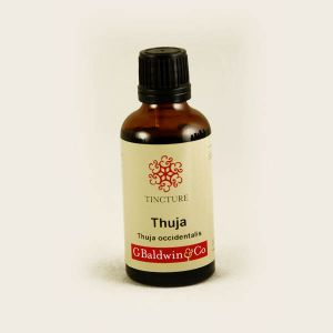 Baldwins Thuja ( Thuja Occidentalis ) Herbal Tincture